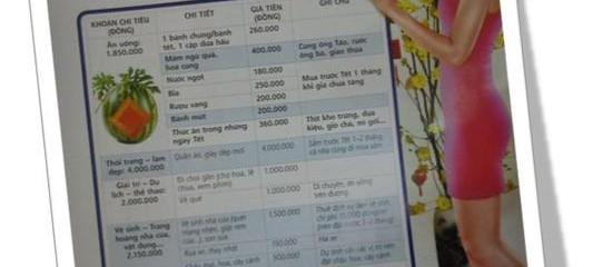 Chi tiêu Tết có kế hoạch (bài trên báo Tiếp thị Gia đình Xuân 2013)